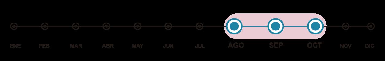 Línea de tiempo